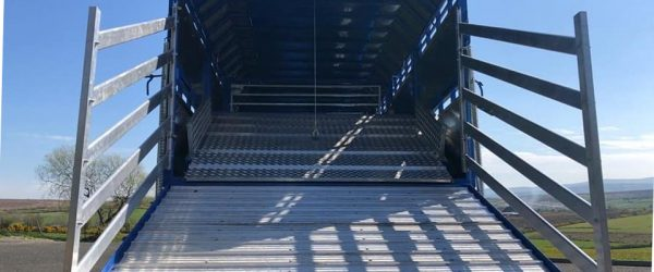 Cattle / Sheep Trailers