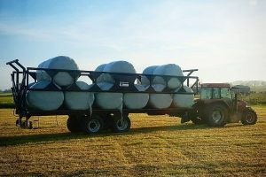 Dinapolis trailer loaded with silage